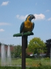 Ausflug Walsrode 05 und  06-06-2010